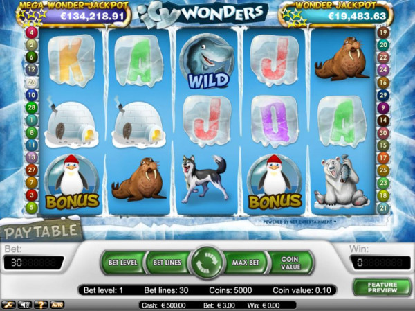 Icy Wonders Screenshot